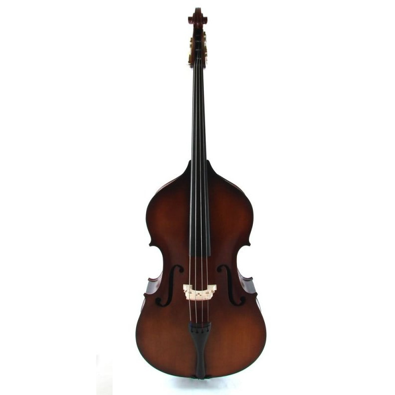 Vienna Strings Bass Hamburg Upright Bass - Floor Demo Model