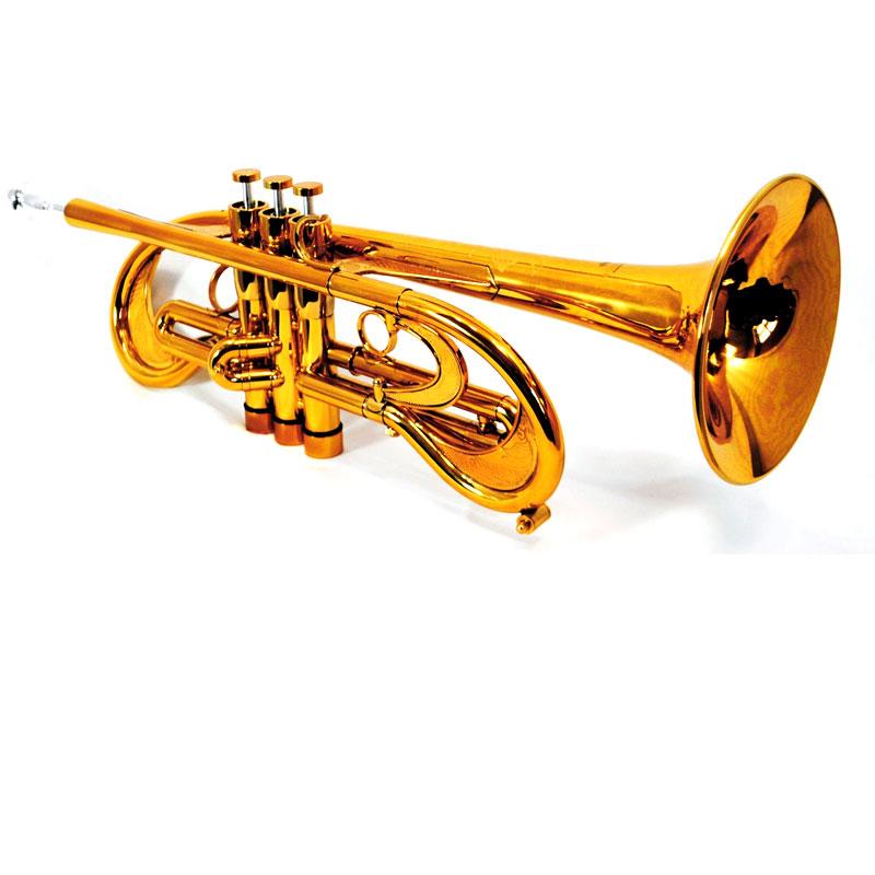 Schiller Old City Taj Bb Trumpet