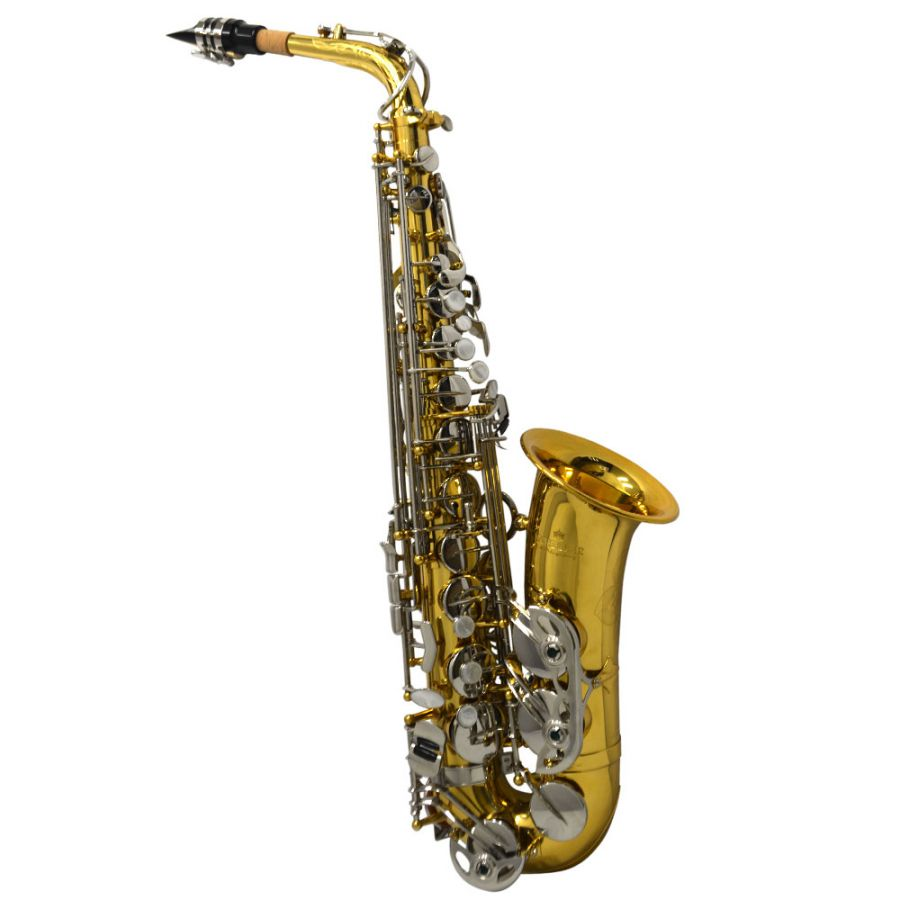 BAND INSTRUMENT SAXOPHONE RENTAL SPECIAL $18.80 MONTH/ 10 MONTHS