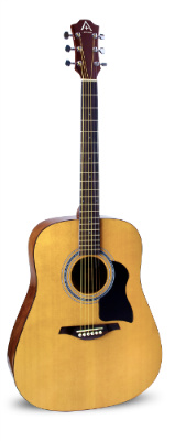 Hohner AS220 Full Size Steel String Dreadnought