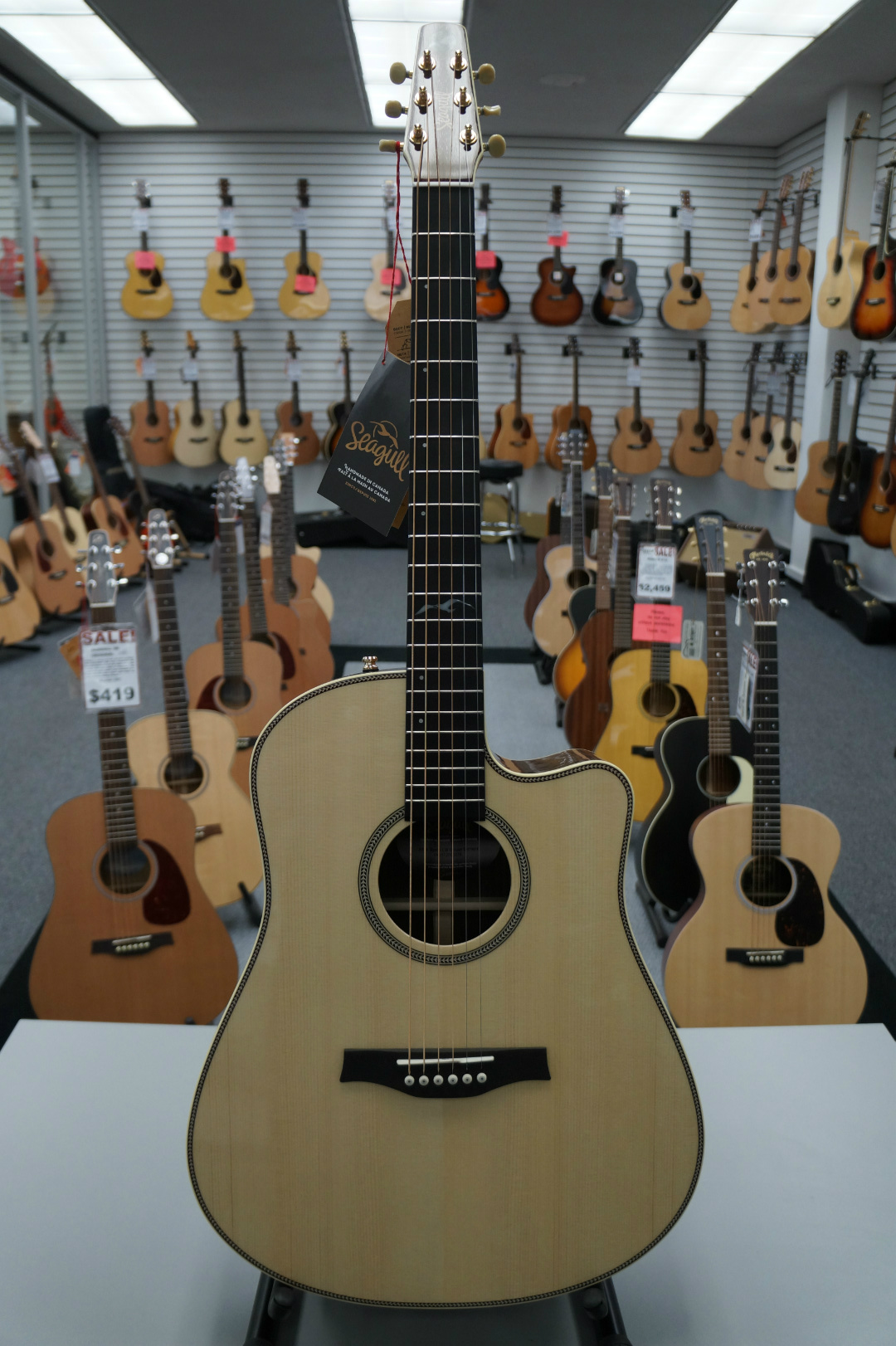 Seagull Artist Studio CW Deluxe Element Acoustic Guitar