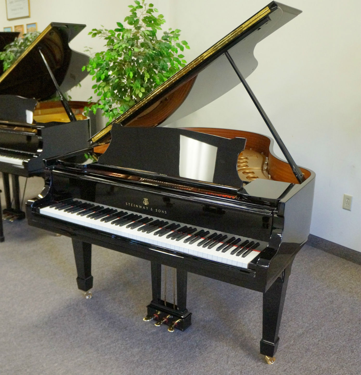 Steinway Model M Grand Piano Ebony Polish