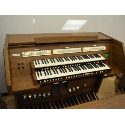 Viscount 60 Deluxe Organ