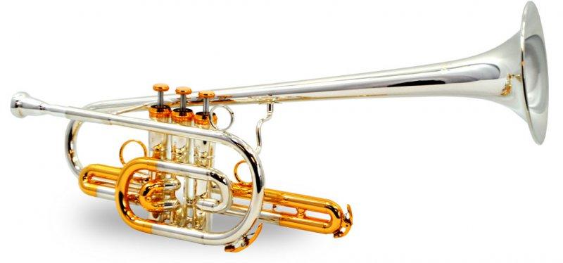 Schiller American Heritage BandLeader 45 Trumpet - Silver & Gold