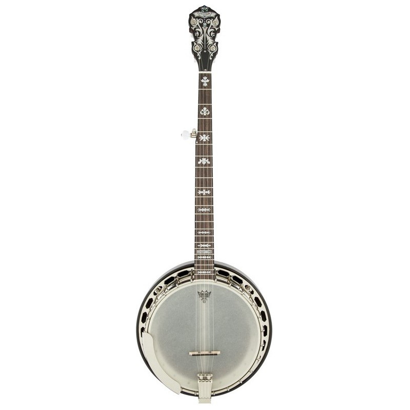 Fender Deluxe Concert Tone 58 Banjo
