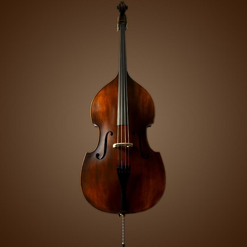 Vienna Strings Hamburg Upright Bass