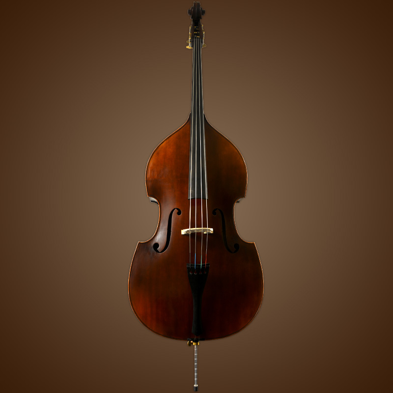Vienna Strings Munich Bass