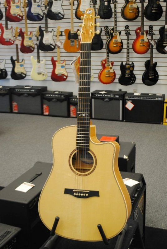 Artist Cameo Cutaway with Quantum II Pickup and Deluxe Tric Case