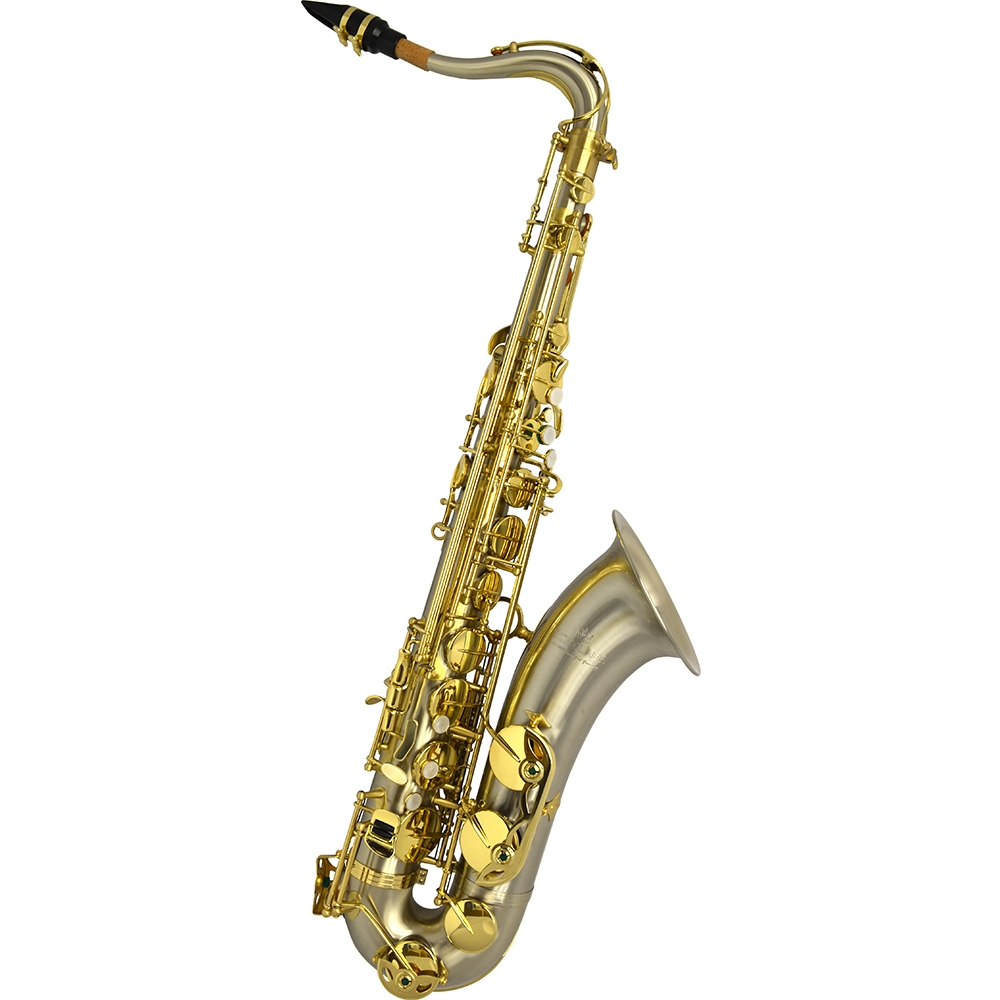 Schiller Elite V Tenor Saxophone – Brushed Silver Steel Stainless Finish