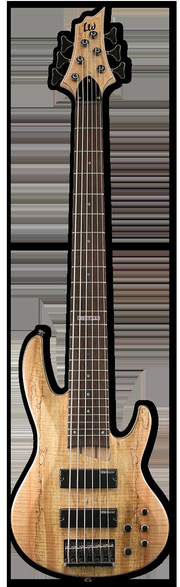 ESP LTD B-206SM Natural Satin Bass Guitar
