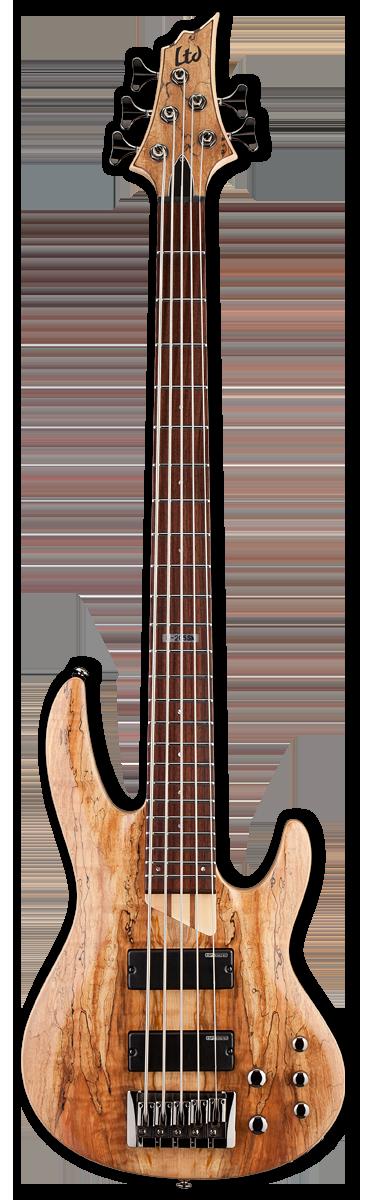 ESP LTD B-205SM Natural Satin Bass Guitar