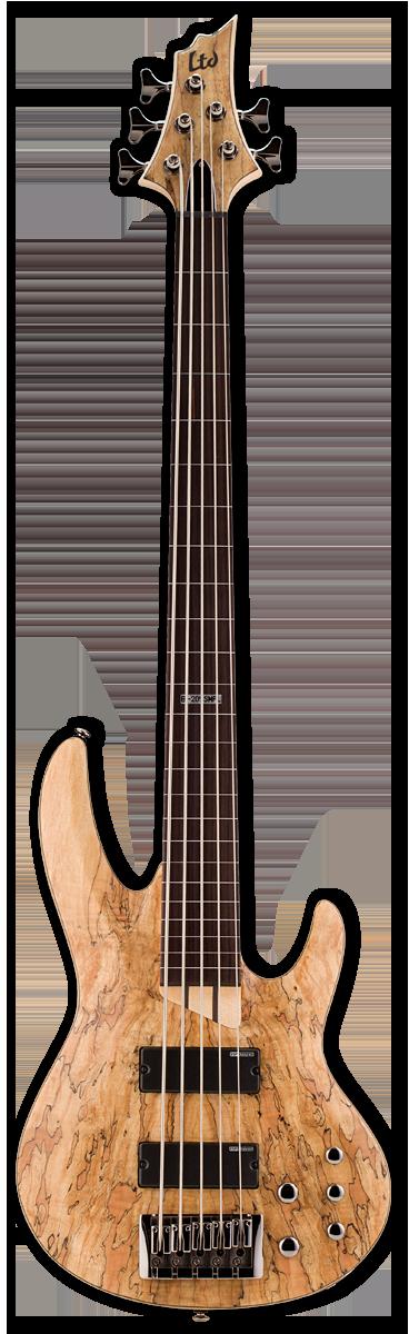 ESP LTD B-205SM Fretless Natural Satin Bass Guitar