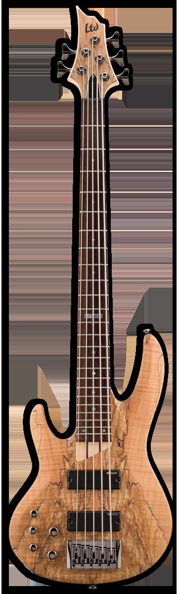 ESP LTD B-205SM LH Natural Satin Bass Guitar