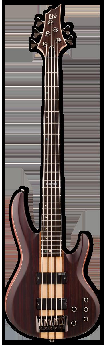 ESP LTD B-5E Natural Satin Bass Guitar
