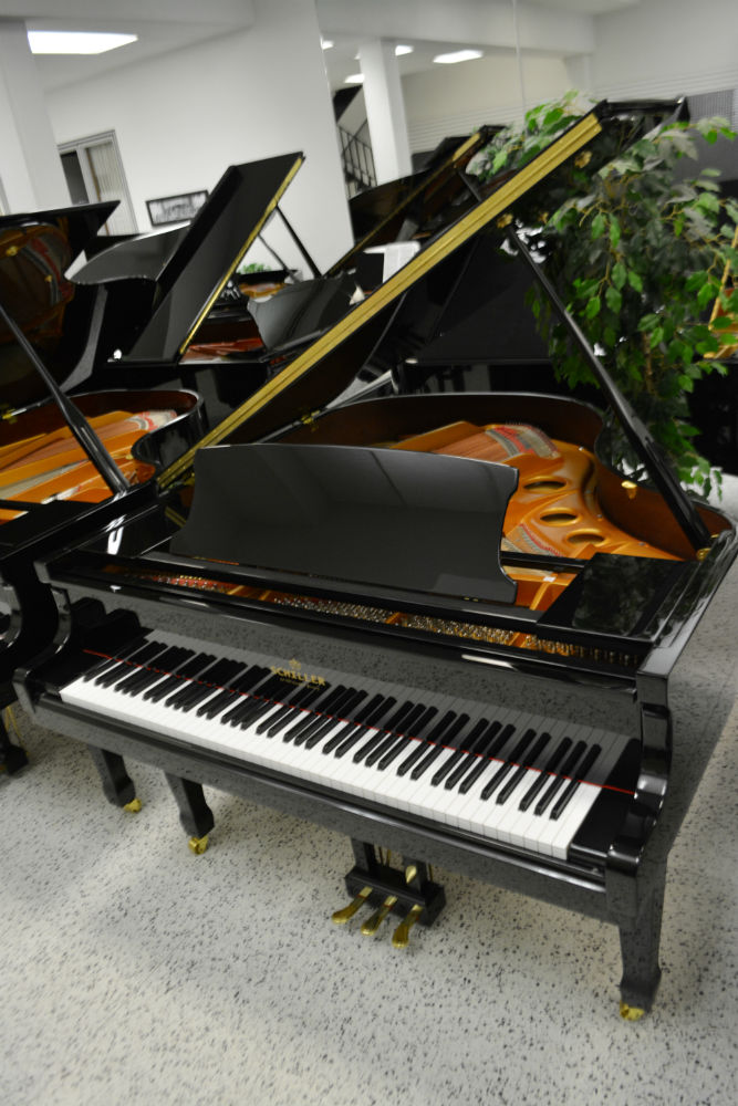 Schiller Baby Grand Ebony Polish