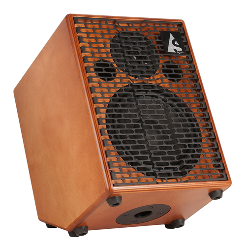 Godin Acoustic Solutions ASG-150 Guitar Amp