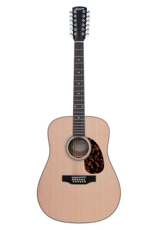 Larrivée D-03-12 String Recording Series Acoustic Guitar