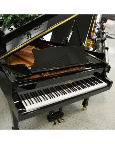 Schiller Concert Series 5.10 Grand Piano