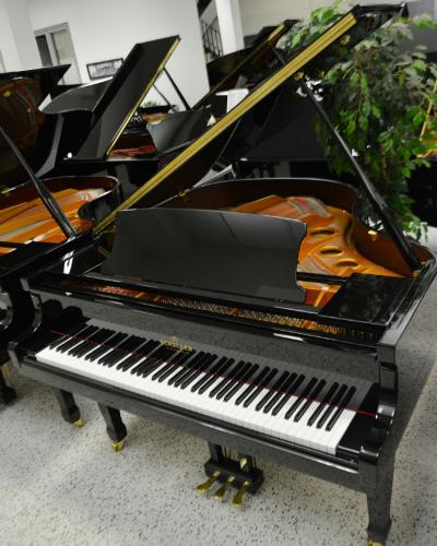 Schiller Performance Grand Piano Berlin 5'3 Black Polish