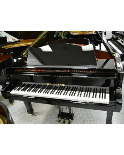 Schimmel Model 206 Wilhelm Black Polish