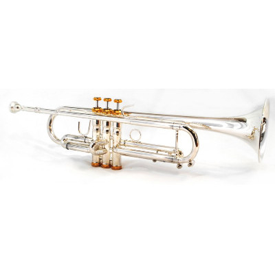 Schiller American Heritage Riviera Trumpet