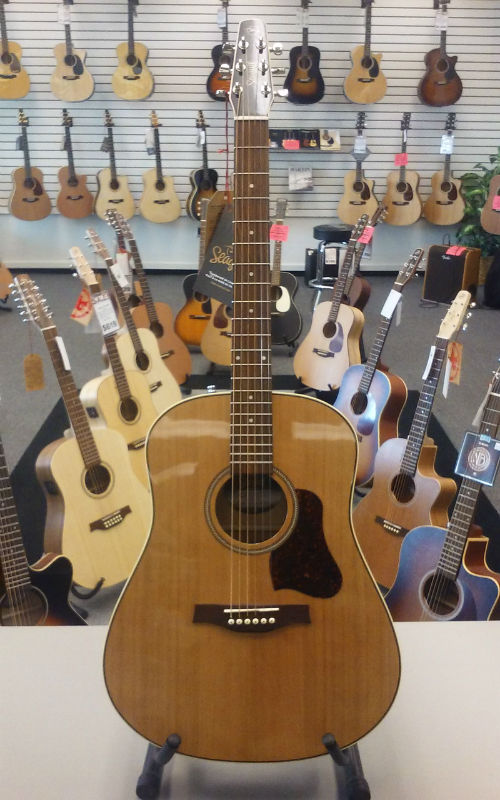 Seagull Coastline Momentum HG Acoustic-Electric Guitar - Natural