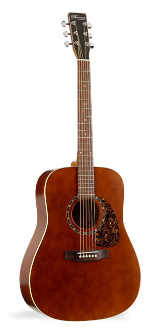 Norman B15 Brown Acoustic Guitar