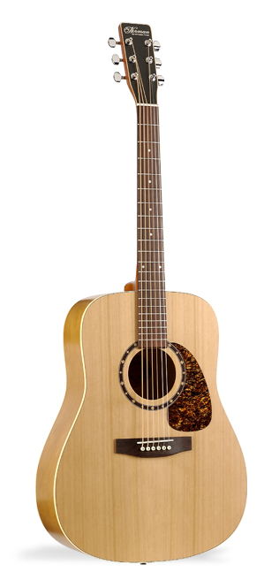 Norman B18 Cedar Acoustic Guitar