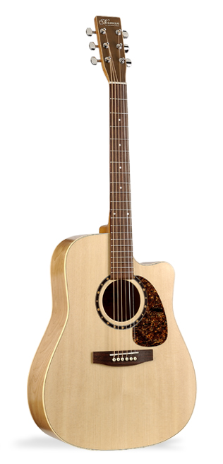 Norman B20 CW Acoustic Guitar