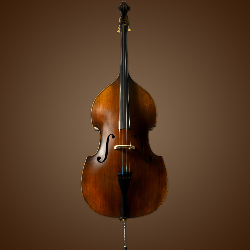 Vienna Strings Hamburg Handcraft Bass