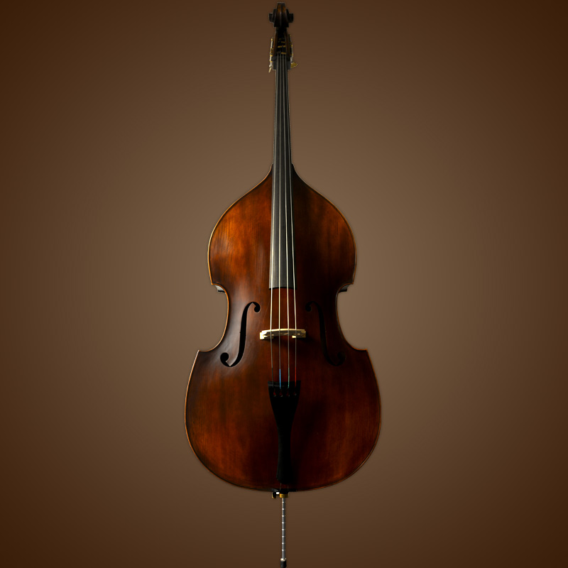 Vienna Strings Hamburg Upright Bass