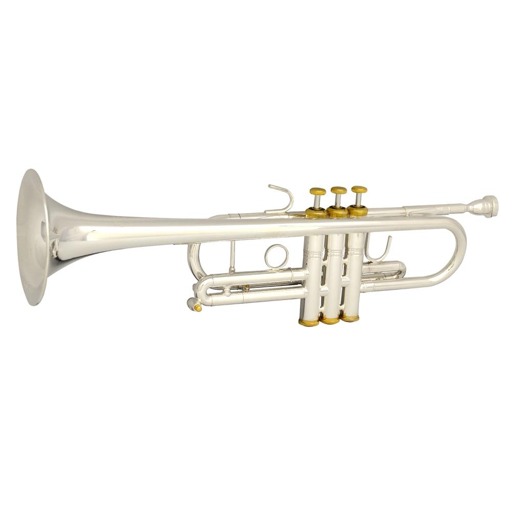 Schiller Elite Symphonic C Trumpet Silver Plated & Gold
