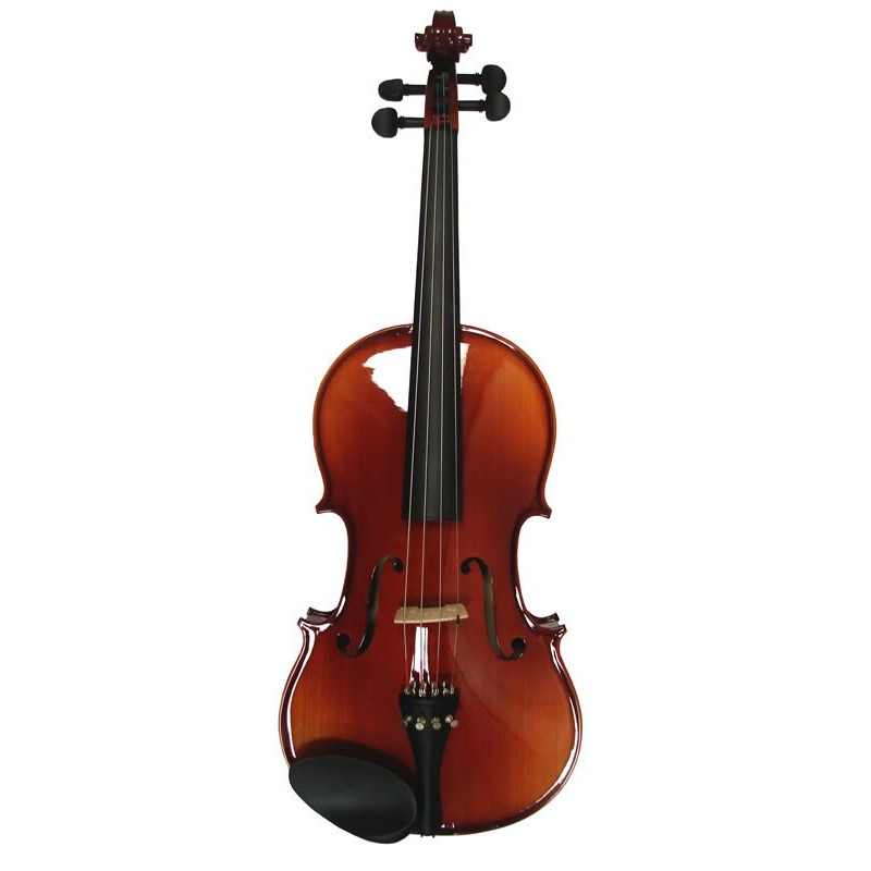 Vienna Strings International 100 Viola