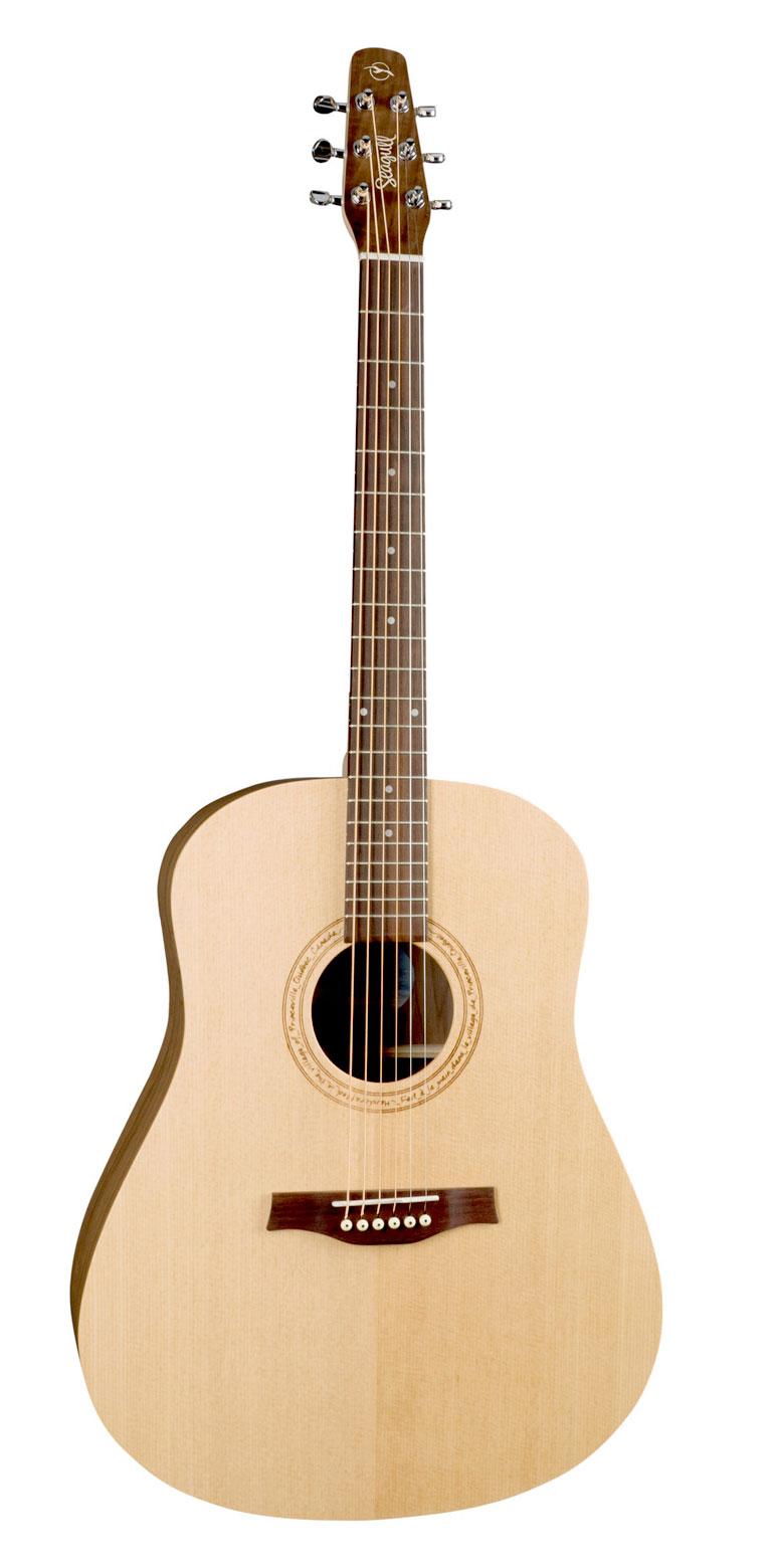 Seagull Walnut Acoustic Guitar