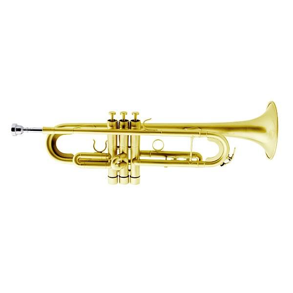 Weril ET8170 Regium II Symphonic Series Bb Trumpet