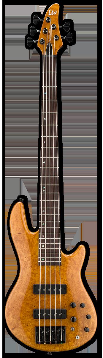 ESP LTD H-1005SE Bass Guitar