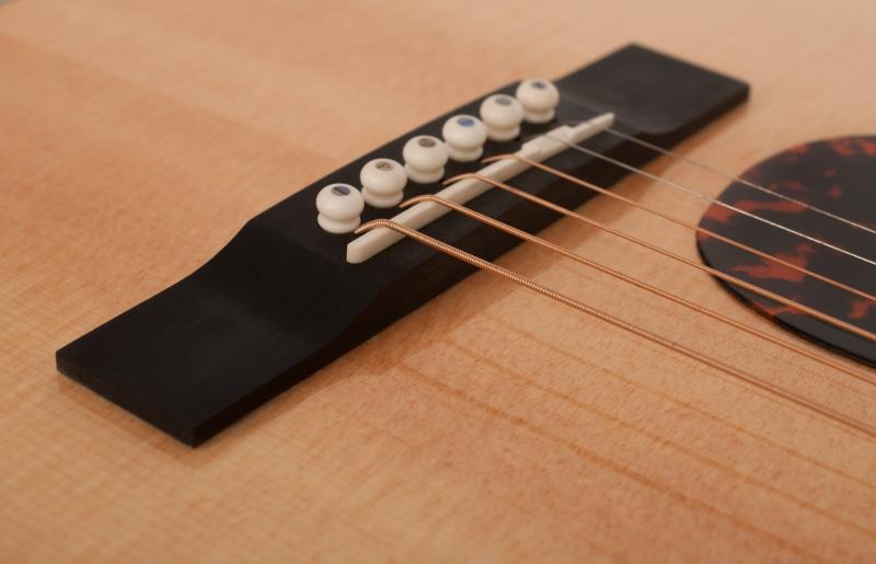 Larrivée PV-09 Artist Series Acoustic Guitar