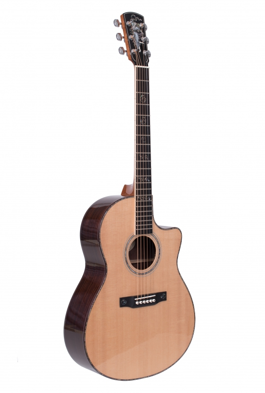 Larrivée LSV-10 Custom Acoustic Guitar