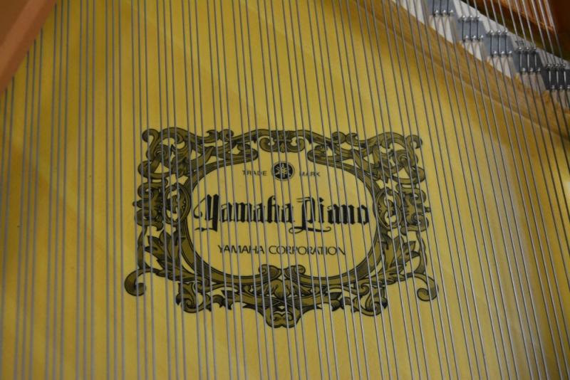 Yamaha C5 Grand Piano (used)