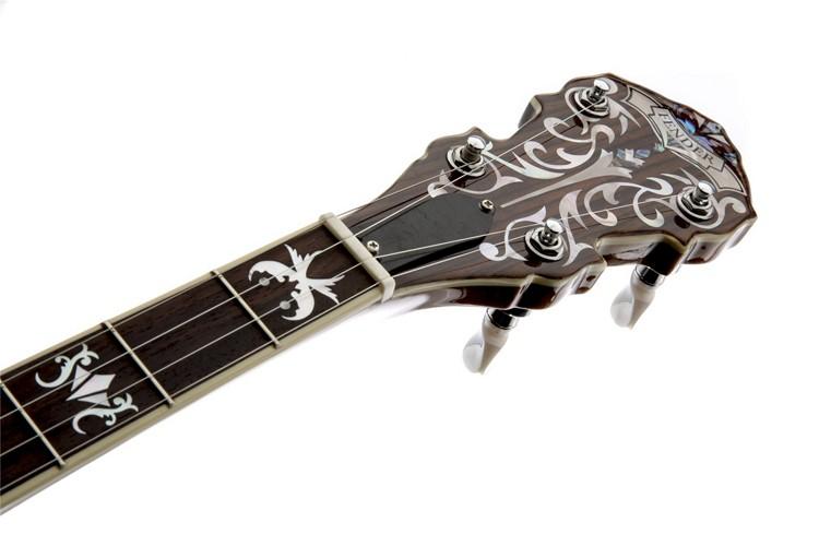 Fender Premier Concert Tone 59 5-String Banjo