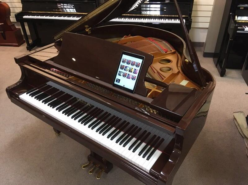 Schiller Baby Grand Walnut Polish w/IPAD Player