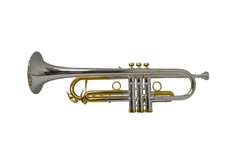 Schiller American Heritage 79 Trumpet Silver/Gold