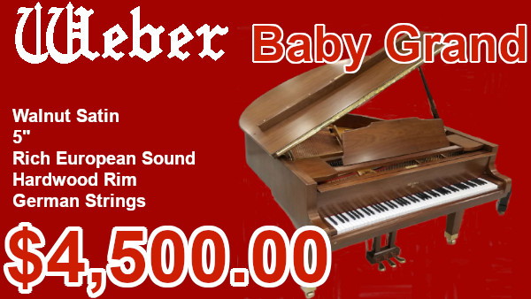 Weber Baby Grand on sale