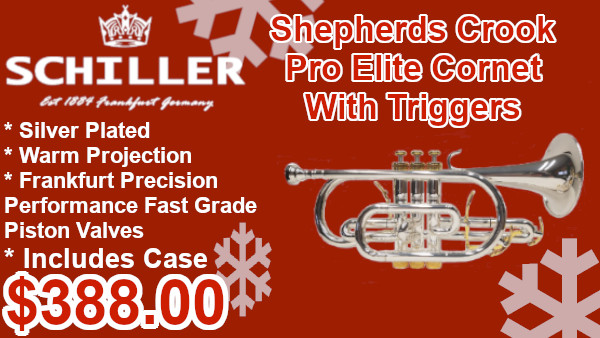 Schiller Shepherds Crook Pro Elite Conet with triggers on sale