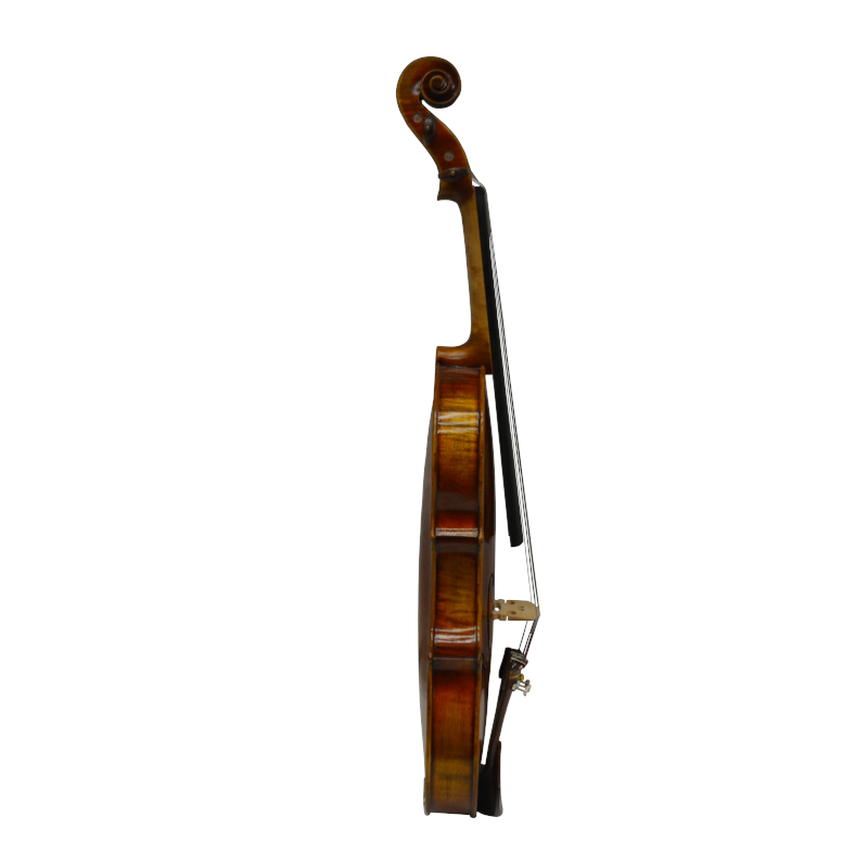 Vienna Strings Munich Violin LTD Handcraft Edition with Selected Woods - Rosewood