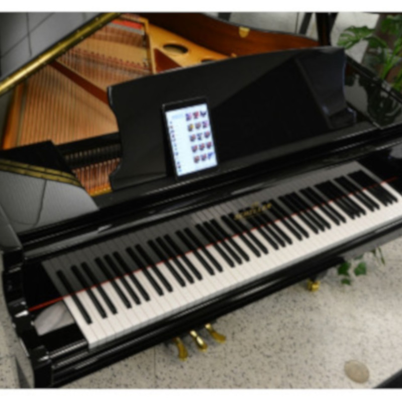 Schiller IPad Player Grand