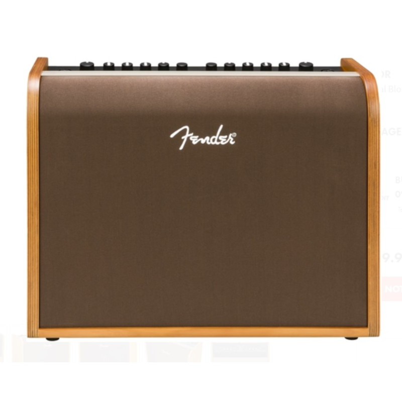 Fender Acoustic 100 Amp