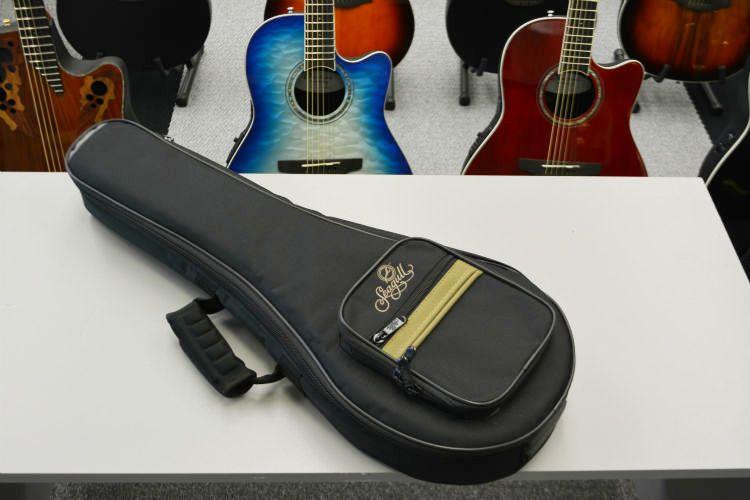 Seagull S8 Mandolin Bag