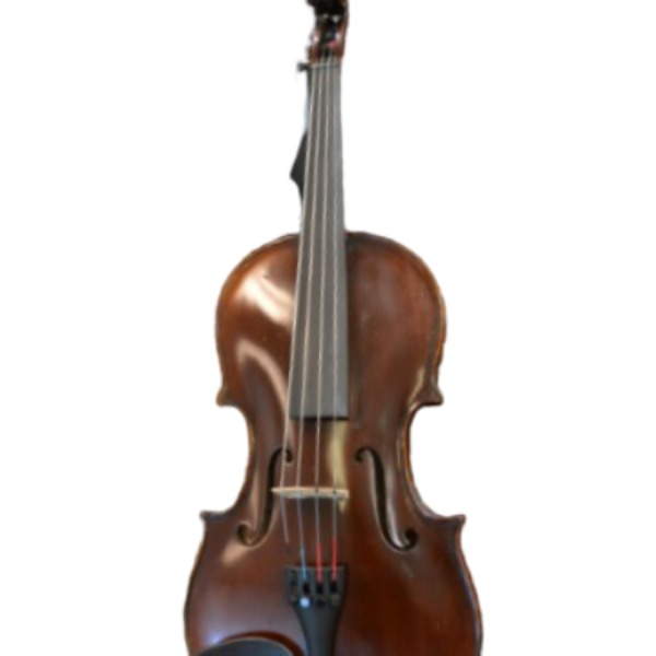 Vienna Strings Munich Violin 4/4 Size