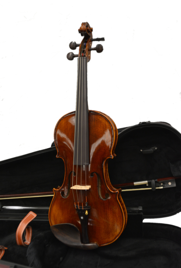 Vienna Strings Violin 4/4 European tradition Hamburg
